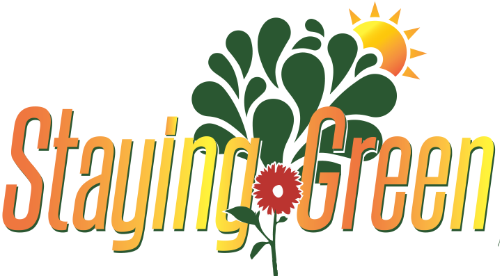 Staying Green Boca Raton Landscaping Landscaping Tree Service And Lawn .